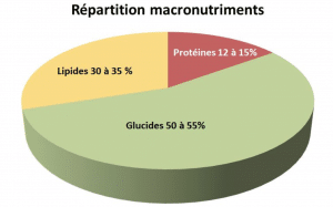 Répartition macronutriments